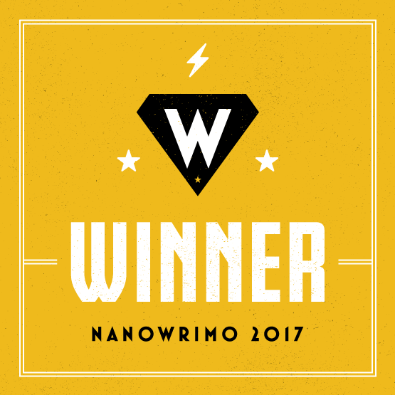 Special 15% Discount for NaNoWriMo 2017 Winners